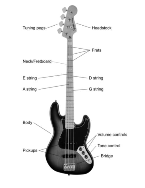 Part of Bass Guitar