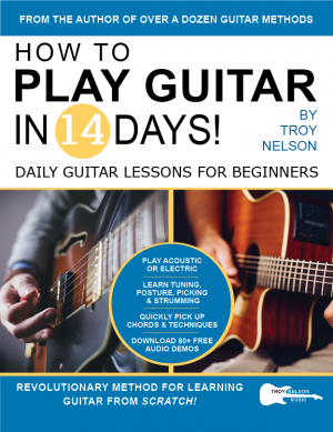 how to play guitar in 14 days