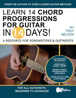 Master Pentatonic Scales For Guitar in 14 Days Bust out of the Box Learn to Play Major and Minor Pentatonic Scale  Patterns and Licks All Over the Neck